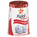 Yoplait Original Mountain Blueberry Low Fat Yogurt