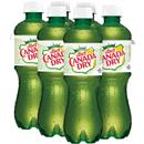 Canada Dry Diet Ginger Ale 6 Pack